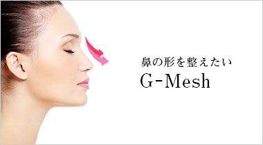 Gメッシュ(G-Мesh)